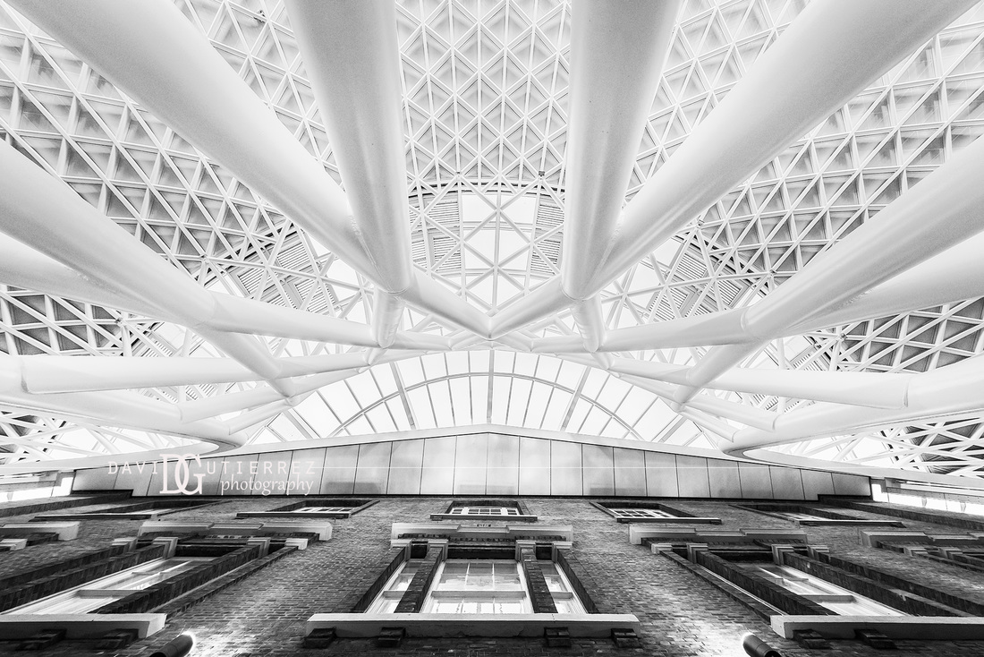 White and black kings cross station london uk london interior photographer